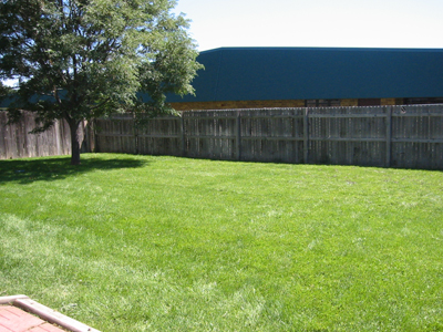 Clean Backyard hubrents provides clean, safe, comfortable, and affordable rental